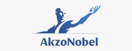 Akzo Nobel Logo